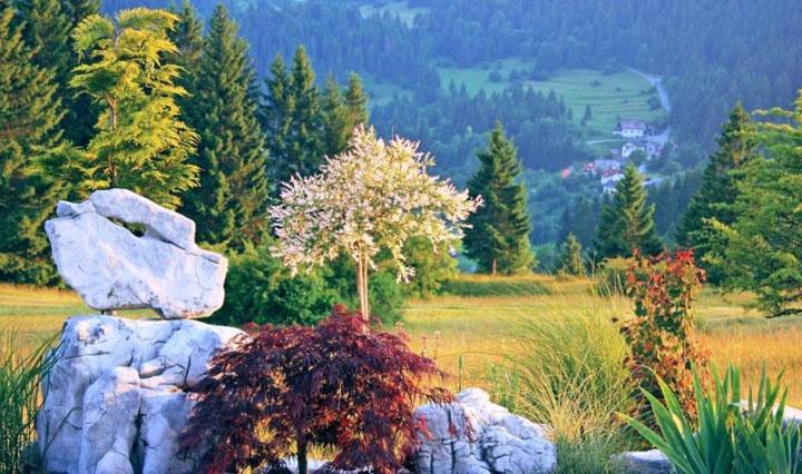 vrt-v-loskem-potoku